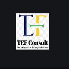 TEF Consult Tanzania Limited Job Opportunity 2021